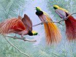 Fauna endemik Papua