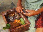 Tradisi menginang papua